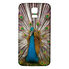 Indian Peacock Plumage Samsung Galaxy S5 Back Case (White)