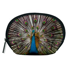 Indian Peacock Plumage Accessory Pouches (Medium)