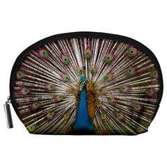 Indian Peacock Plumage Accessory Pouches (Large)