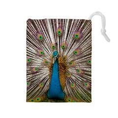Indian Peacock Plumage Drawstring Pouches (Large)