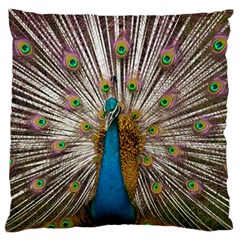 Indian Peacock Plumage Large Flano Cushion Case (Two Sides)