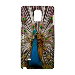 Indian Peacock Plumage Samsung Galaxy Note 4 Hardshell Case