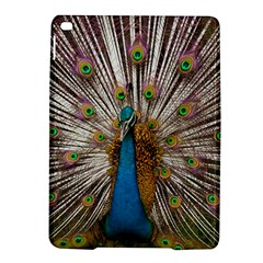 Indian Peacock Plumage iPad Air 2 Hardshell Cases