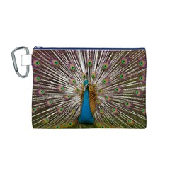 Indian Peacock Plumage Canvas Cosmetic Bag (M)