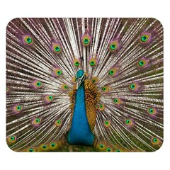 Indian Peacock Plumage Double Sided Flano Blanket (small)