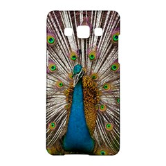 Indian Peacock Plumage Samsung Galaxy A5 Hardshell Case