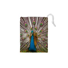 Indian Peacock Plumage Drawstring Pouches (XS)