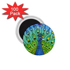 Peacock Bird Animation 1.75  Magnets (100 pack)