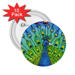 Peacock Bird Animation 2.25  Buttons (10 pack)