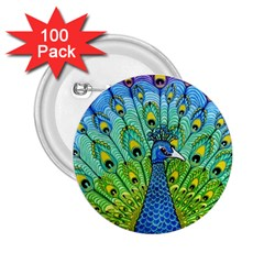 Peacock Bird Animation 2 25  Buttons (100 Pack)