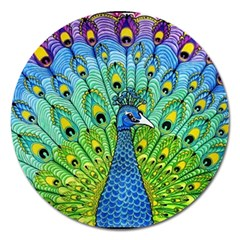 Peacock Bird Animation Magnet 5  (Round)