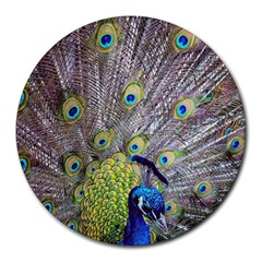Peacock Bird Feathers Round Mousepads