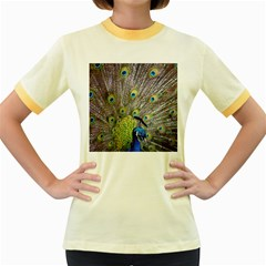 Peacock Bird Feathers Women s Fitted Ringer T-Shirts