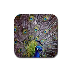 Peacock Bird Feathers Rubber Coaster (square)