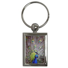 Peacock Bird Feathers Key Chains (Rectangle)