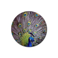 Peacock Bird Feathers Rubber Round Coaster (4 Pack)