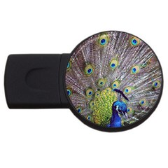 Peacock Bird Feathers USB Flash Drive Round (4 GB)
