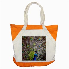 Peacock Bird Feathers Accent Tote Bag