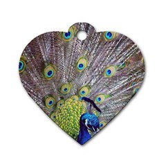 Peacock Bird Feathers Dog Tag Heart (One Side)