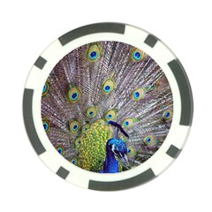 Peacock Bird Feathers Poker Chip Card Guard