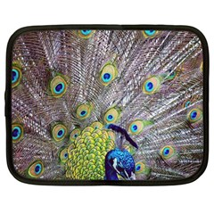 Peacock Bird Feathers Netbook Case (large)