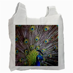 Peacock Bird Feathers Recycle Bag (two Side)