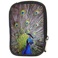 Peacock Bird Feathers Compact Camera Cases