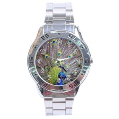 Peacock Bird Feathers Stainless Steel Analogue Watch
