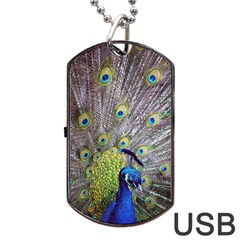 Peacock Bird Feathers Dog Tag USB Flash (One Side)