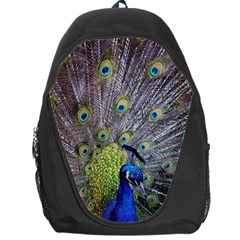 Peacock Bird Feathers Backpack Bag