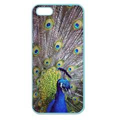 Peacock Bird Feathers Apple Seamless iPhone 5 Case (Color)