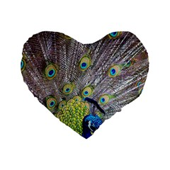 Peacock Bird Feathers Standard 16  Premium Heart Shape Cushions