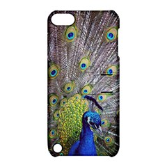 Peacock Bird Feathers Apple iPod Touch 5 Hardshell Case with Stand