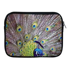 Peacock Bird Feathers Apple iPad 2/3/4 Zipper Cases