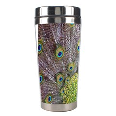 Peacock Bird Feathers Stainless Steel Travel Tumblers