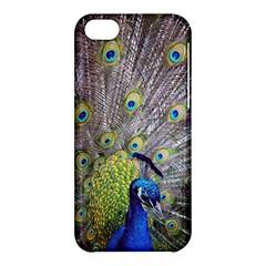 Peacock Bird Feathers Apple iPhone 5C Hardshell Case