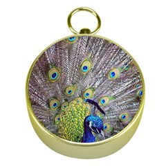 Peacock Bird Feathers Gold Compasses