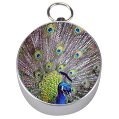 Peacock Bird Feathers Silver Compasses