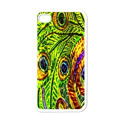 Peacock Feathers Apple iPhone 4 Case (White)