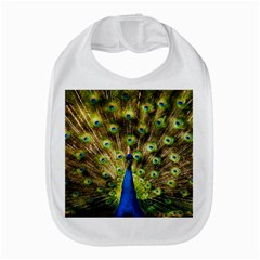 Peacock Bird Amazon Fire Phone
