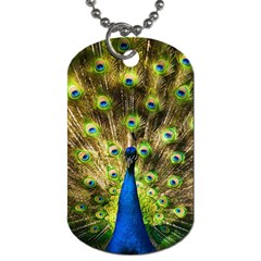 Peacock Bird Dog Tag (One Side)