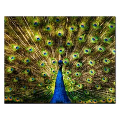 Peacock Bird Rectangular Jigsaw Puzzl