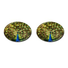 Peacock Bird Cufflinks (Oval)