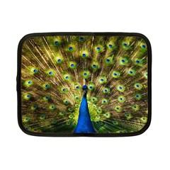 Peacock Bird Netbook Case (Small)