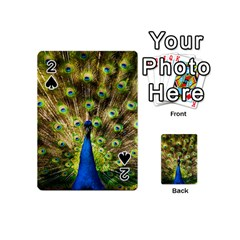 Peacock Bird Playing Cards 54 (Mini)