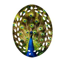 Peacock Bird Oval Filigree Ornament (Two Sides)