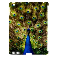 Peacock Bird Apple iPad 3/4 Hardshell Case (Compatible with Smart Cover)
