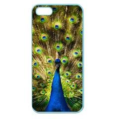 Peacock Bird Apple Seamless iPhone 5 Case (Color)