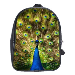 Peacock Bird School Bags (XL)