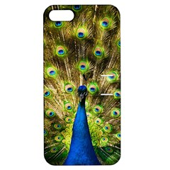 Peacock Bird Apple Iphone 5 Hardshell Case With Stand